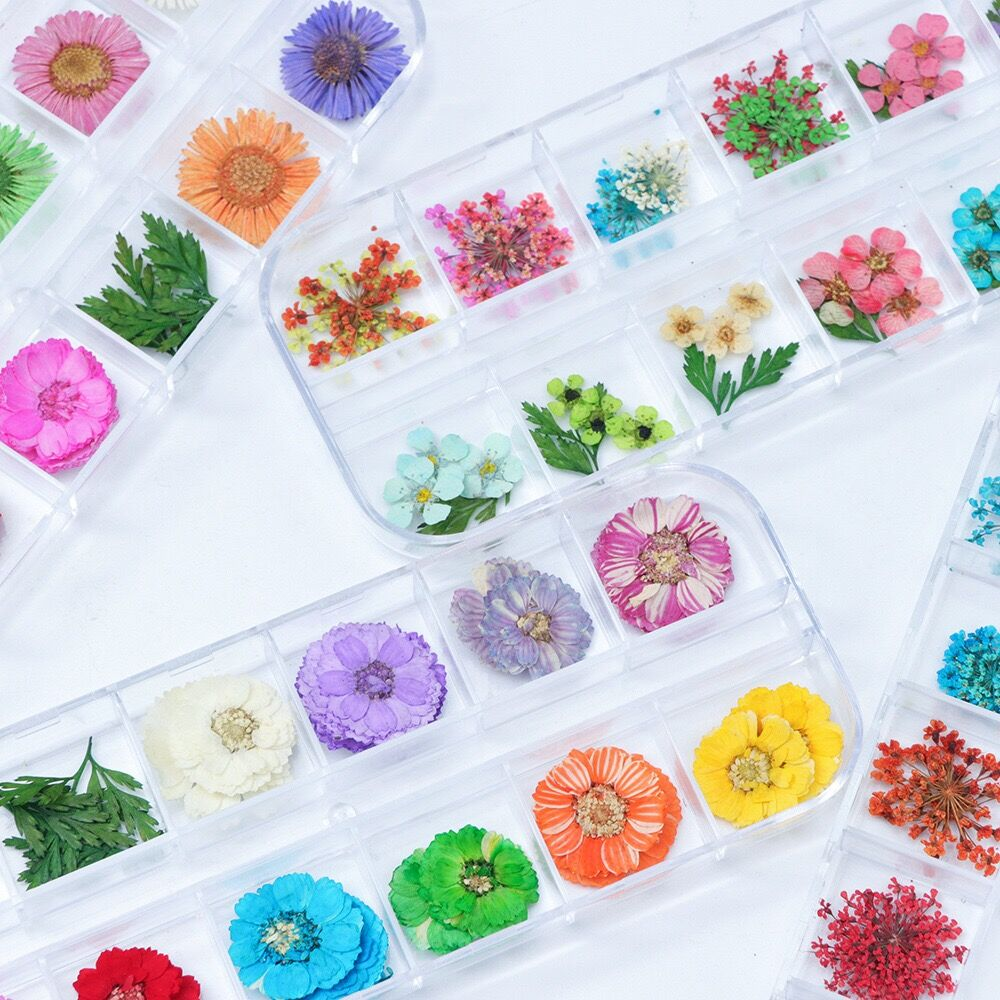 12colors Dried Flower DIY Resin Jewelry Stuff Nail Art Floral Decor Handmade Charms Accessories Cosmetic Beauty Mini Flowers Art