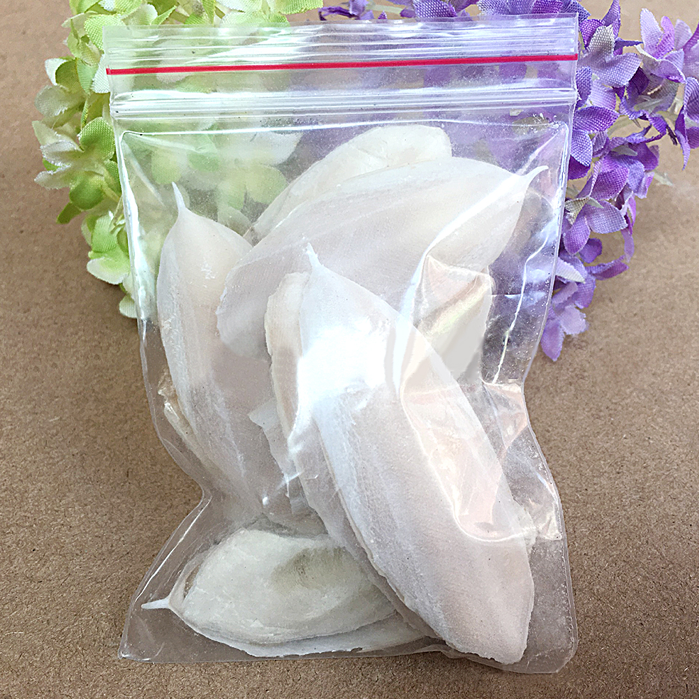 1Bag Yummy Cuttle Fish Cuttlefish Bone For Budgie Birds Reptiles Tortoise Food Nourish Hair Ornament Calcium To Strengthen Bones