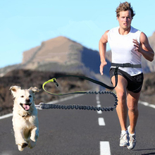 Эластичный пояс собаки поводок Бег бег собака спорт код регулируемый нейлоновый поводок собаки с светоотражающие полосы Pet Интимные аксессуары 05S2