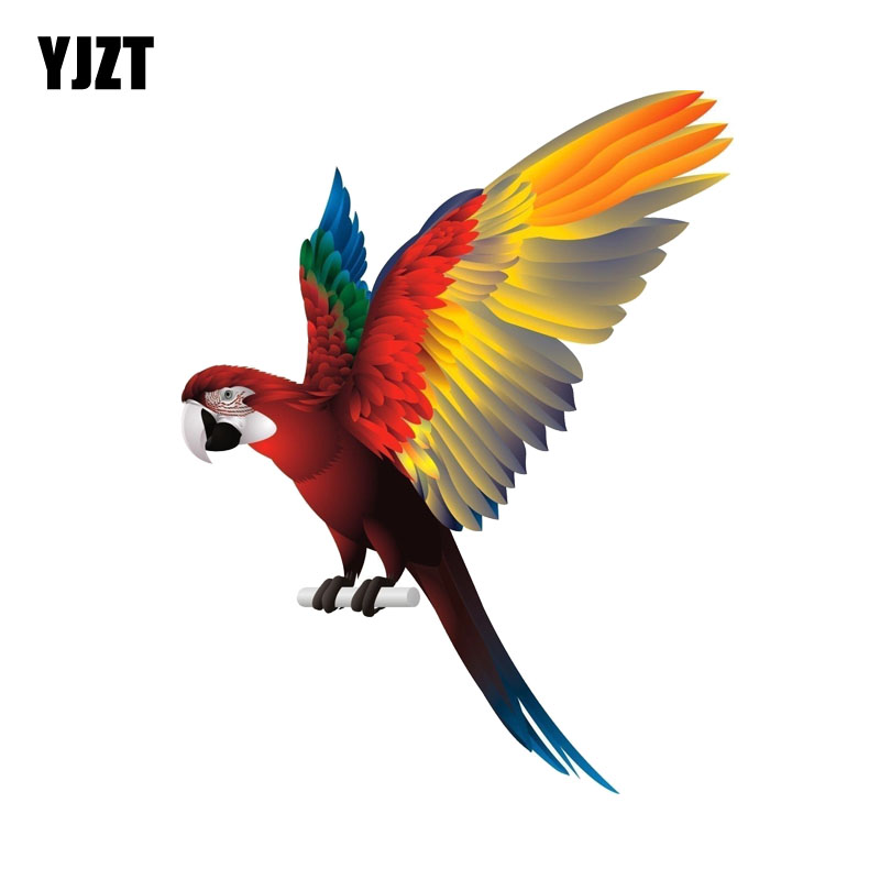 YJZT 12.4CM*16CM Parrot Bird Spread Wings Car Sticker Creative Funny Decal PVC 12-0549