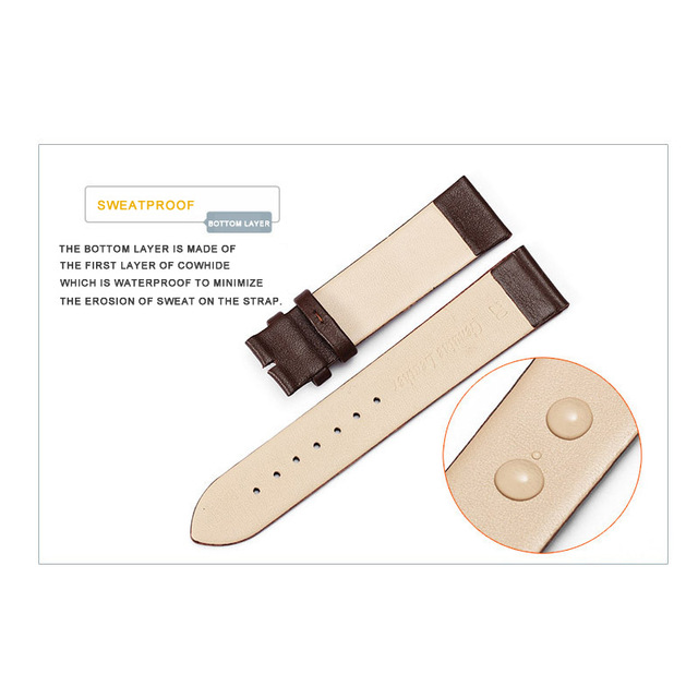 Smart Watch Accessorie