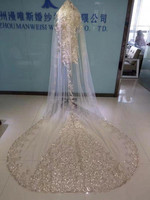 Real Image Wedding Veils 3 Meters Long Cathedral Length 2019 Bridal Accessories Rhinestones Beaded Tulle Bridal Veils