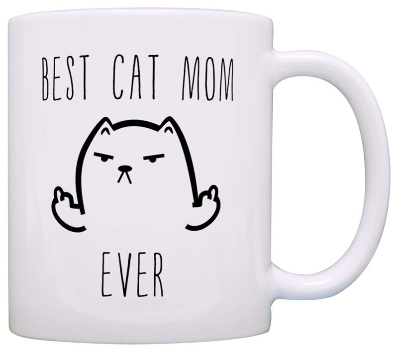 Funny Cat Gifts Best Cat Mom Dad Ever Rude Cat Lovers Cat Memes Gift Coffee Mug Tea Cup Christmas Gift for Mother Father Mom Dad image