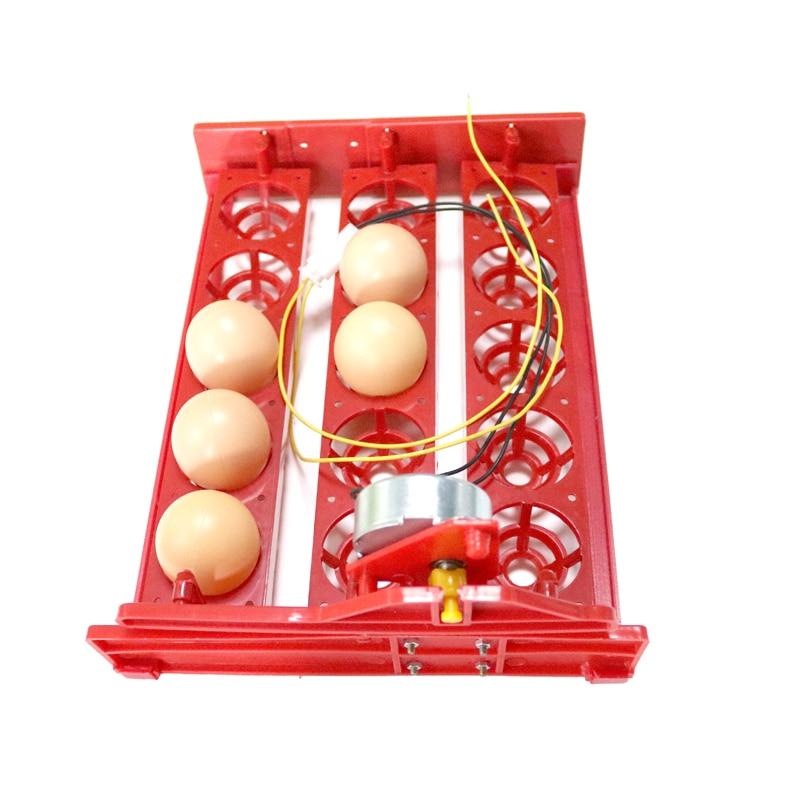 15 Incubator mini ouă Incintă automată pentru ouă Tava 220V / - Produse pentru animale de companie - Fotografie 5