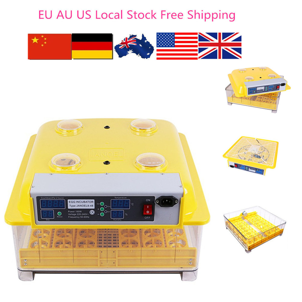 Fast ship from Germany ! Mini egg brooder incubator hatcher machine quail chicken duck parrot 60 eggs incubator new design jn5 60 mini egg incubator poultry hatcher egg chicken quail duck incubator