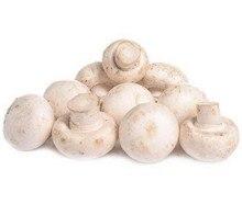 Big 200 Pcs Delicious White Mushroom Bonsai Green Vegetables Plant Easy To Grow Home