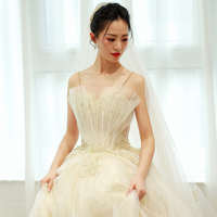 Shell Champagne Wedding Dresses 2019 Ball Gown Applique Beaded Tulle Lace Bridal Gown Long Vestido de Novia