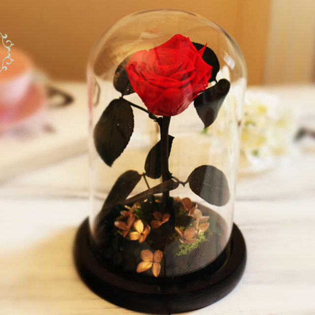 Glass Cover Preserved Rose Flower Immortal Red Roses for Valentine's Day, Christmas, Wedding Gifts