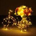 5 pçs/lote 2 M 20 leds À Prova D' Água Fio de Cobre Led String Luzes de Energia Da Bateria 2xCR2032 Garland Festa de Casamento Luzes De Natal