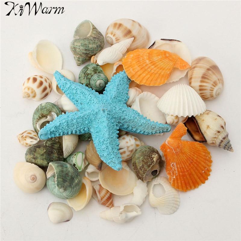 KiWarm 1 комплект в средиземноморском стиле DIY модный пляжный разнородные раковины микс морских ракушек натуральные поделки для аквариумных рыб украшение для аквариума купить на AliExpress