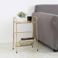 sofa side Nordic golden iron coffee table Creative small end table with book magzine rack shelf wholesale living room furniture