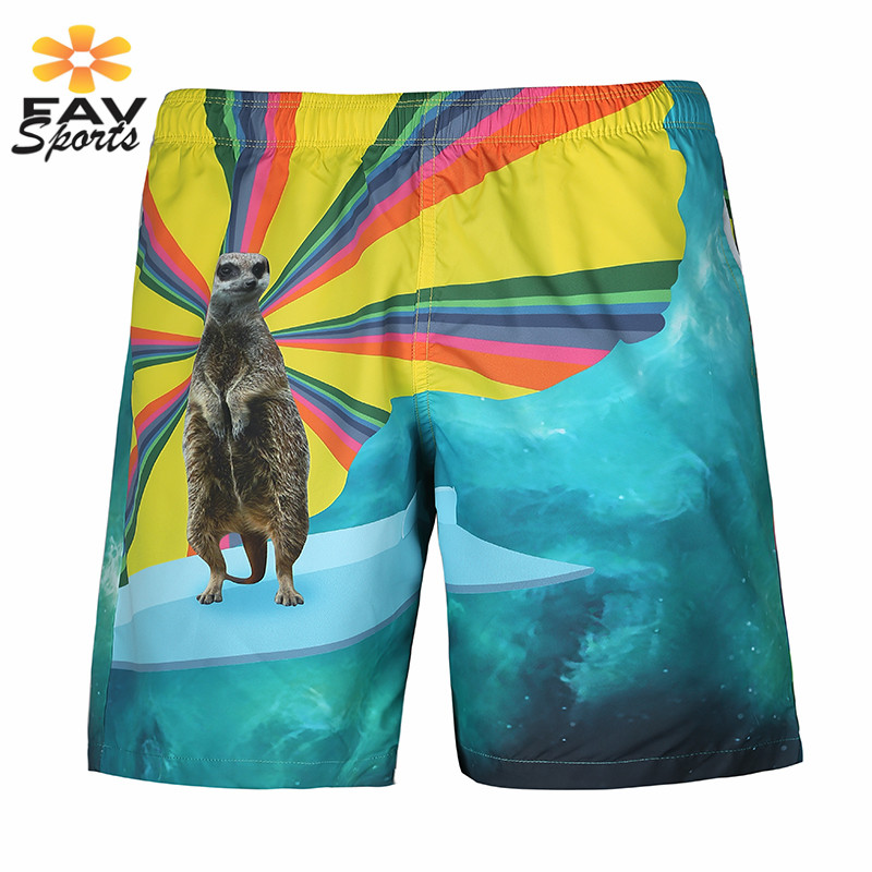 Beach Trunks 3D Print Men Quick Dry Surf   Board     Shorts   Summer Swimming Trousers Elastic Sports Jogger Trunks Travel Swimwear