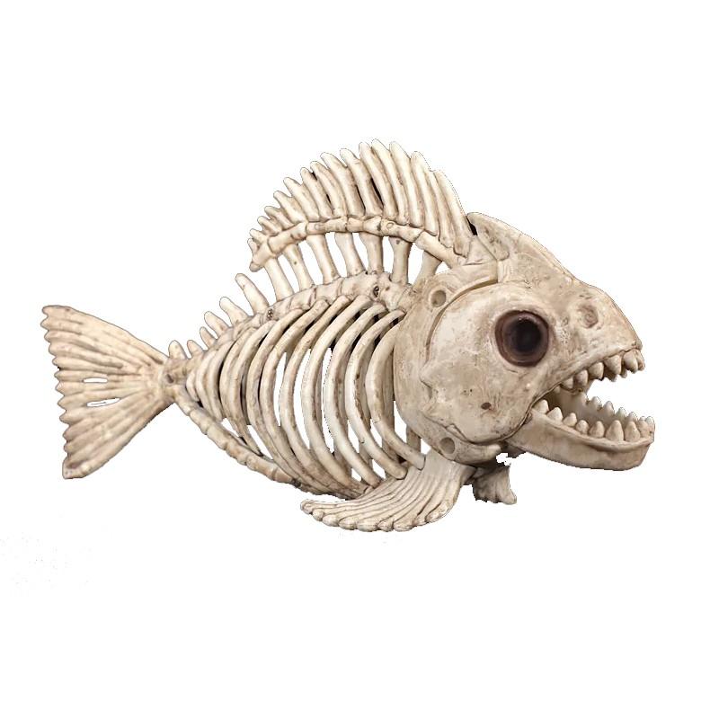 GA16015 skeleton fish