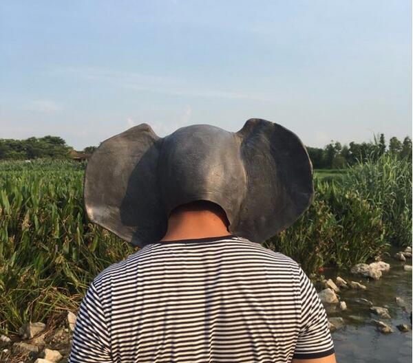 Elephant Maskalar Halloween Yetkin Lateks Maska Realistic Heyvan - Şənlik aksesuarları - Fotoqrafiya 4