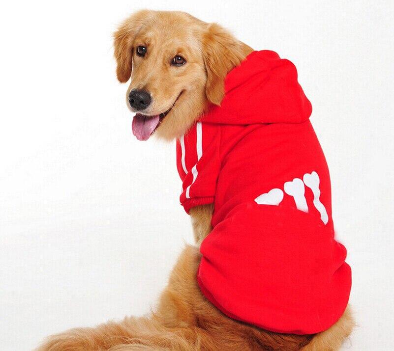 adidas hoodie dog