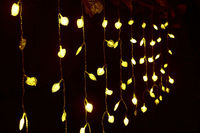 3M x 3M 300 LED Hearts Outdoor Party Christmas xmas String Fairy Wedding Curtain Lights Lighting 220~240V OR 110V RGB color