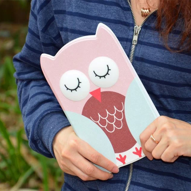 Cartoon 3D Eye Cute Owl PU Leather Flip Bracker cases covers Apple iPad mini 1 2 3 +STYLUS PEN+Package - TelWin Technology co.,ltd store