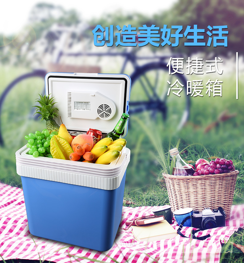 2 In 1 Mini Home Car Refrigerator 24L 12V 220V Mini Fridge Cold Warm Dual Use Cooler Box Home Car Fridge