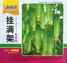 (Mix minimum order $5)Hot selling 1 pack 100pcs+ Fruit cucumber seed – vegetable seeds DIY home garden free shipping