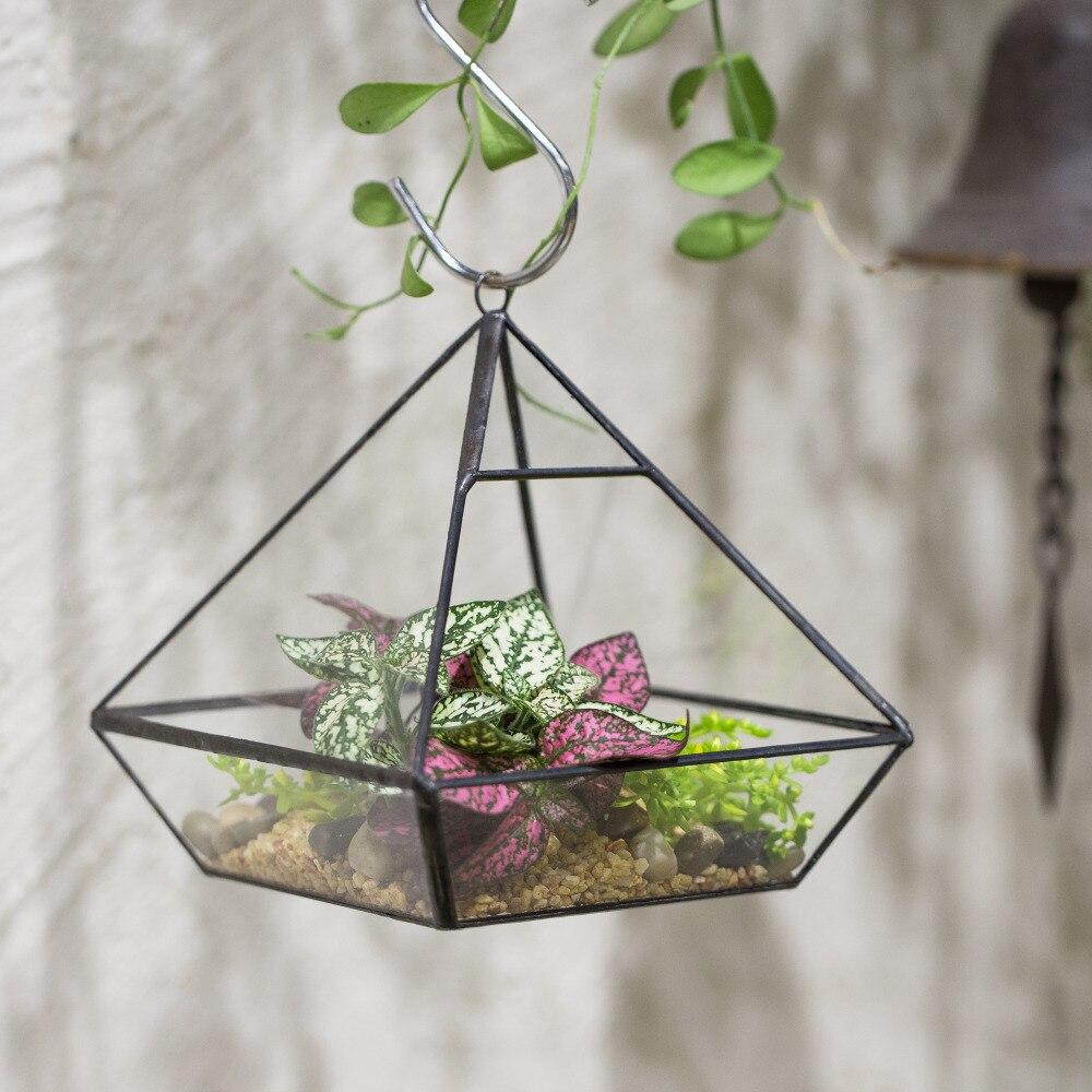 Bağlı tablet Asma Vertebral Suculentent Fern Moss çiçəyi - Ev dekoru - Fotoqrafiya 3