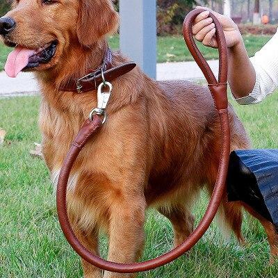 Купить p цепной поводок для собак ошейник нейлоновый альпинизма щенков
