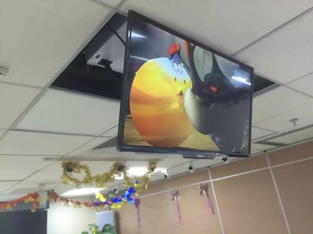 US $450.0 |Große projekt halterung decke tv lift für 32 80 zoll tv, tv  halterung für Plasma TV Motorisierte 110 v 250 v für große projekt-in ...
