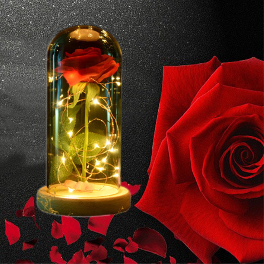 Birthday Gift Led Rose Flowers Eternal+Glass Dome on a Wooden Base+Deer Animal Decor Christmas Valentines Mothers Day Gifts