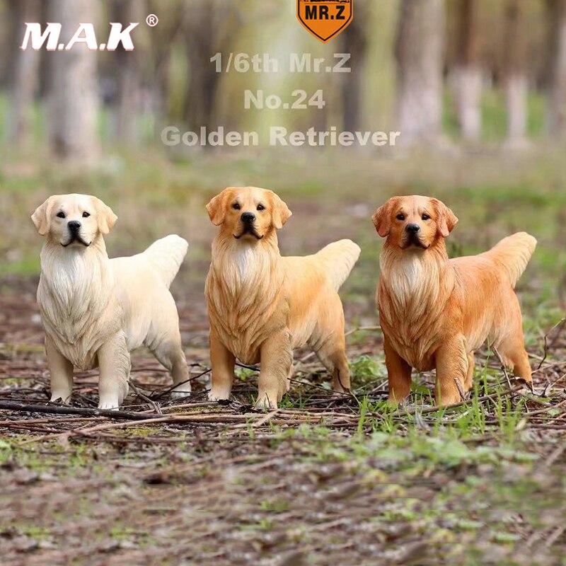 MR.Z 1//6 MRZ025 004 Labrador Retriever Dog Model F 1//6 Action Figure Scene Acces