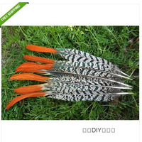 100 PCS beautiful natural pheasant feather 20 25cm / 8 10inches