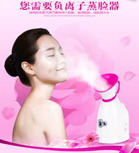 Home ues Nano negative ion face steamer beauty equipment repair Water spray device SPA beauty instrument 220V