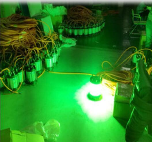 AC200V ל 240V 500W Undrwater LED דיג אורות עגן הלילה - תאורה חיצונית