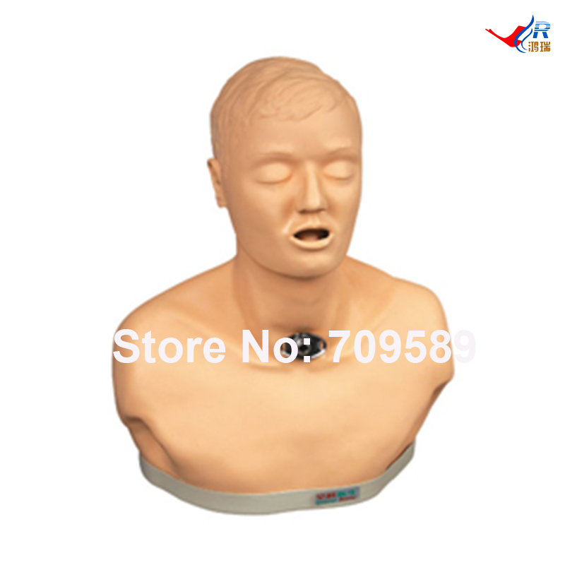 Adult Tracheotomy Care Simulator, Nursing Manikin economic basic patient care manikin female nursing manikin nursing mannequin