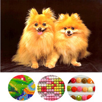 Diamond Painting Cross Stitch Animals Pomeranian Dog Needlework diy diamond Embroidery Crafts Mosaic home decor Picture GIFT