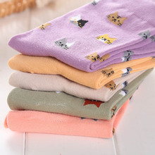 New Womens Girl Cotton Fashion Creative Cartoon Cat Hosiery Warm Socks Lovely Comfortable High Quality