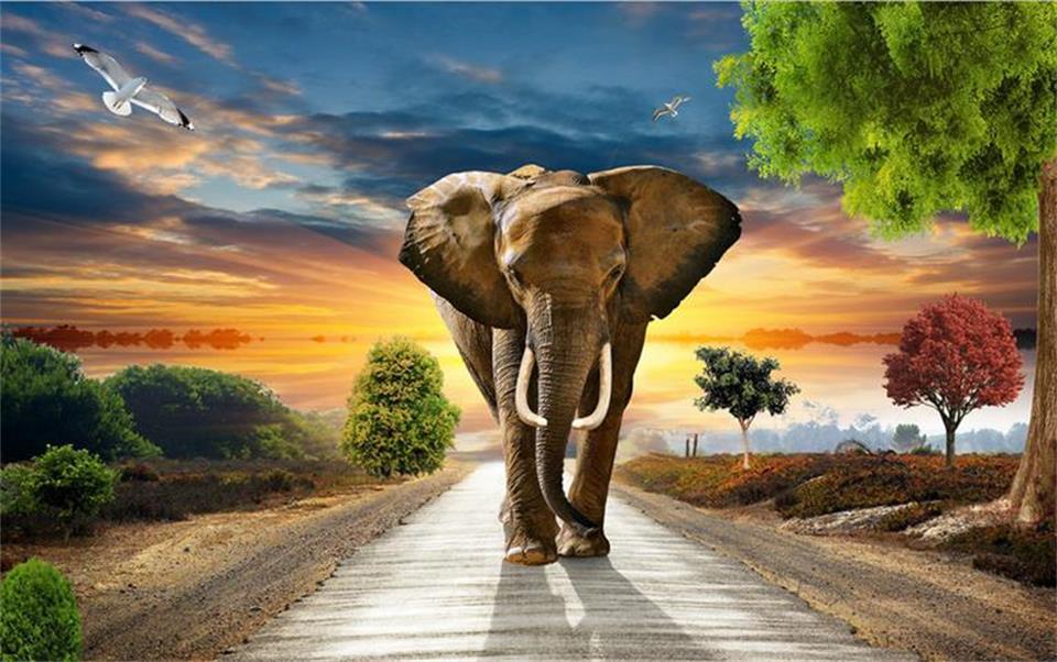 3d Custom Photo Mural 3d Wallpaper Elephant Sky Road Bird Setting