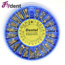 Dental 24K pozłacane Śruba Post 120pcs & 2Key Dental Screw Post Dental Supplies materiały stomatologiczne