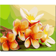 WEEN Magnolia Flowers-DIY Painting By Numbers Kit,Canvas Coloring Paint Numbers, Calligraphy For Home Decor 40x50CM