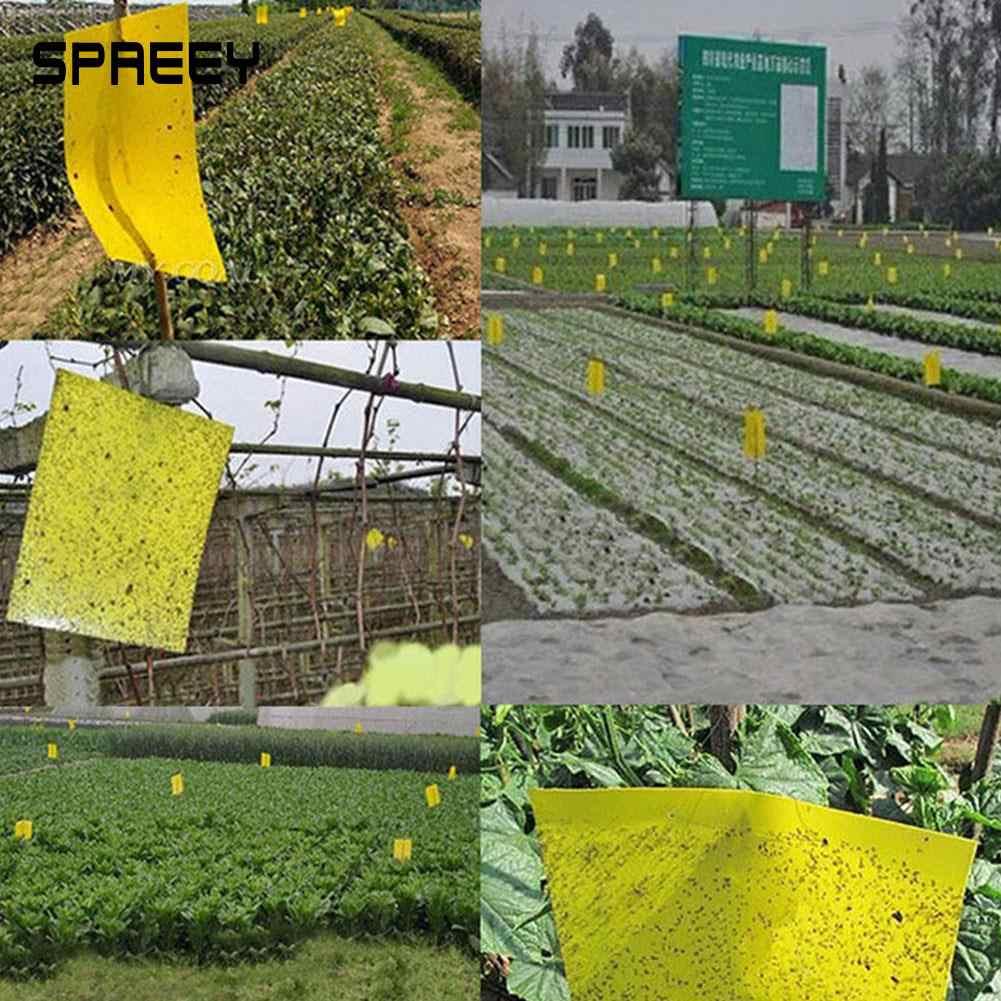 5 pcs Inseto Assassino Voa Armadilhas Para Insectos Pegajosa Grande Área Amarelo/Azul De Pragas Voar Insetos Pendurado Apanhadores de Armadilha Pegajosa ferramenta de jardim