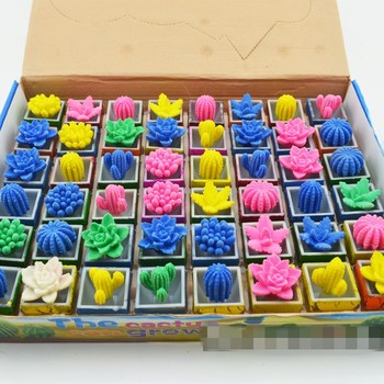 288pcs/lot Wholesale Funny Growing Up Cactus Drinking Water Cactus Grow Up Toys Children's Toy Free Shipping  WJ001