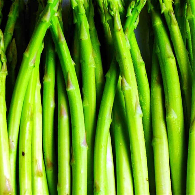 200 pz Asparagi Biologico Heirloom Rare Verde Verdura Perenne Giardino piccola fortuna di Bambù casa pianta vaso di fiori fioriere 50