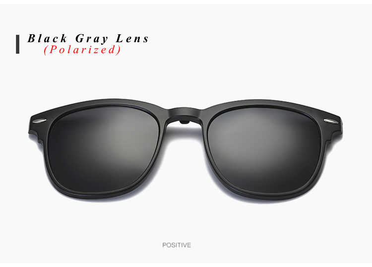Polarized Sunglasses (16)