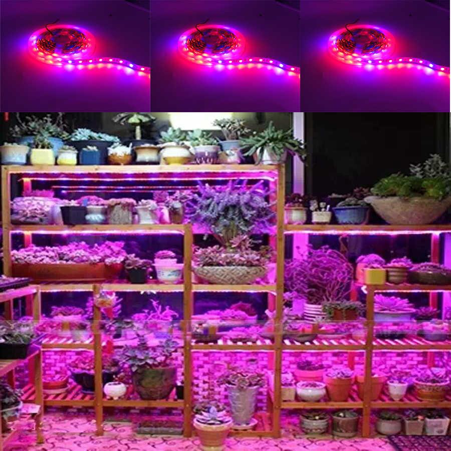 5 M HA CONDOTTO LA Pianta Coltiva La Luce SMD 5050 Sistemi idroponici Crescere Ha Condotto La Luce Bar Fiori e piante Impermeabile DC 12 V Led Coltiva La Luce di Striscia