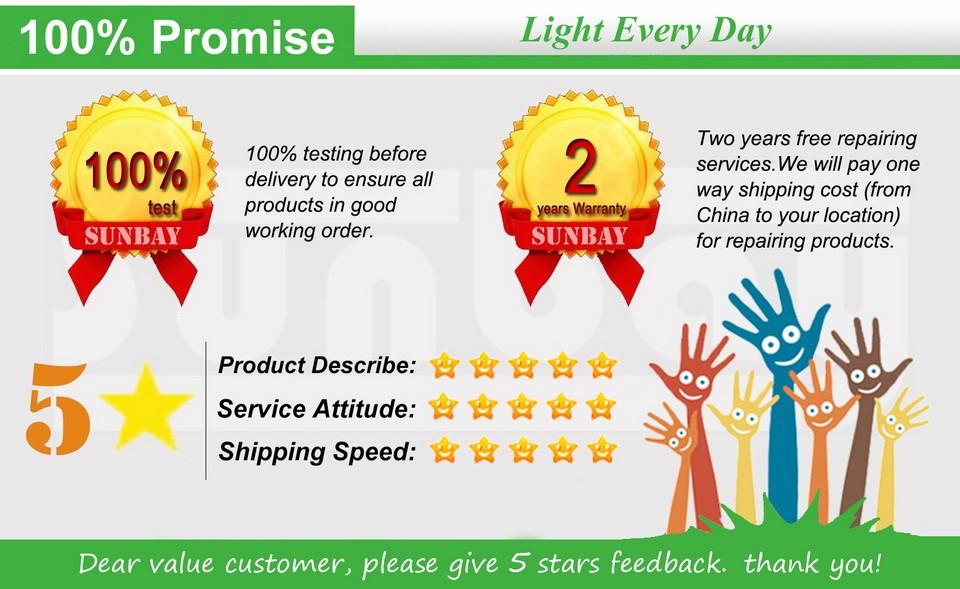 12S-T8-R17d-Promise