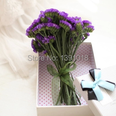Dried Flowers Purple Myosotis Natural Wind Home Decoration Diy Materials 10pcs Lot 6colros Wedding Gift