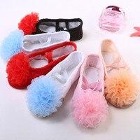 Doux Filé Fleur Enfants Ballet Chaussures Nouveau Modèle Fille De Danse En Cuir Chaussures enfant ballet vêtements dansant accessoire