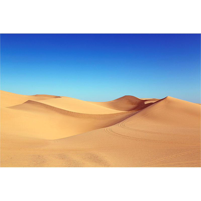 Beautiful Blue Sky Desert Scenery Diy Digital Painting By Numbers Modern Wall Art Canvas Painting Christmas Unique Gift Home Decor 40x50cm Home & Garden