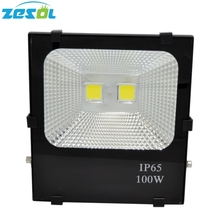 100W ZESOL Spotlight Outdoor
