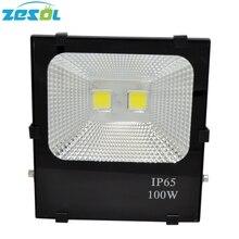 ZESOL LED Flood Light 100W Outdoor Lighting Gargen Lamp Spotlight Refletor AC85-265V IP65 Waterproof