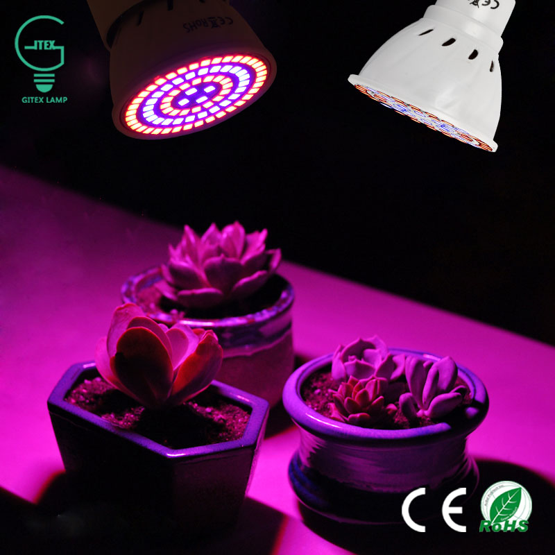 Full Spectrum E27 E14 GU10 MR16 LED Grow Lights 220V 240V LED Grow Bulb Lamp For Garden Flowering Plant And Hydroponics System