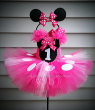 First Birthday Minnie Mouse Outfit